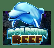 mega888 Dolphin Reef