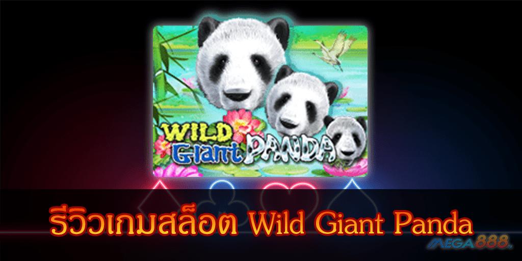 MEGA888-รีวิวเกมสล็อต Wild Giant Panda
