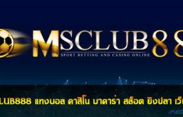 MSCLUB888