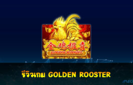 GOLDEN ROOSTER