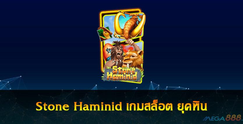 Stone Haminid