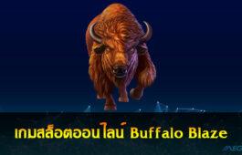 Buffalo Blaze