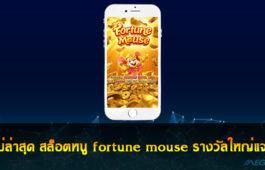 สล็อตหนู fortune mouse